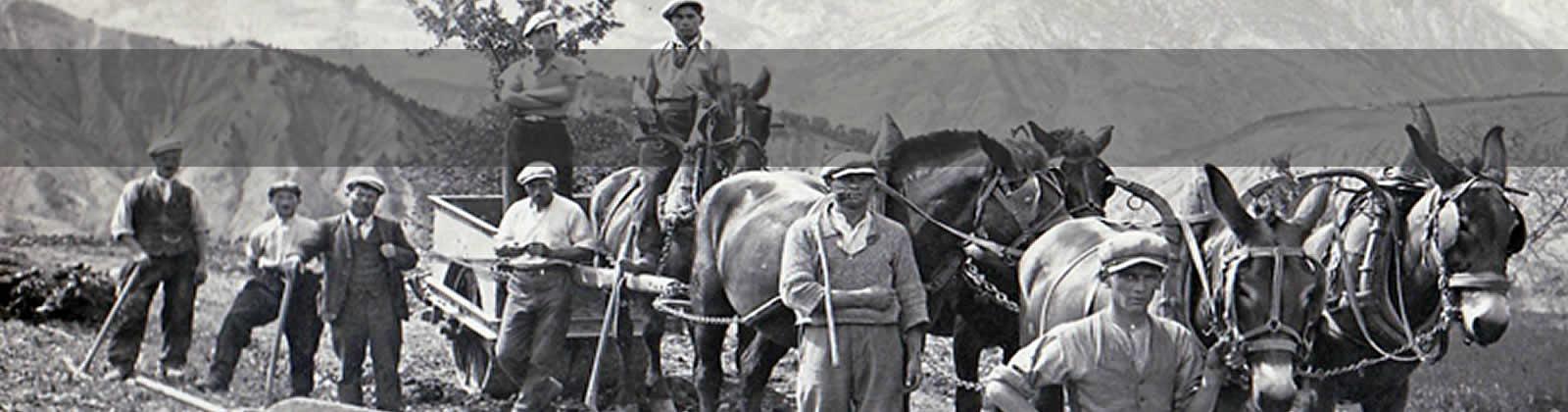 Aubery Travaux Publics - Historique